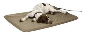 therapeutic dog beds