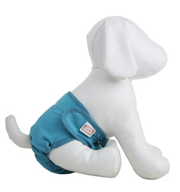 dog incontinence products